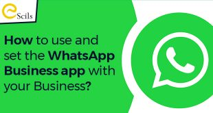 How-to-use-and-set-the-WhatsApp-business-app-with-your-business