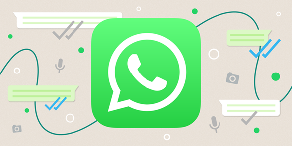 How to use and set the WhatsApp business app with your business?